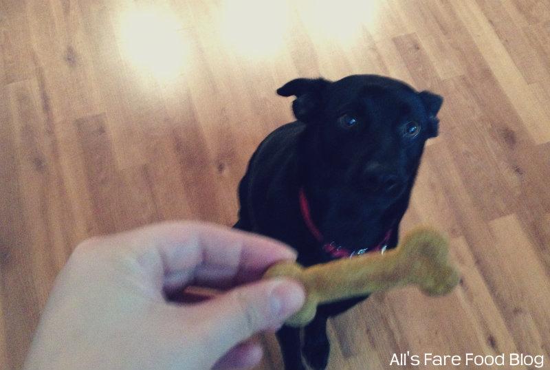 Dakota's Pumpkin Peanut Butter Treats (6/6)