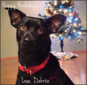 dakota-xmascard